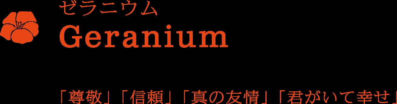 ゼラニウム Geranium 尊敬、信頼、真の友情、君がいて幸せ